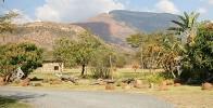 Moholoholo Rehabilitation Centre